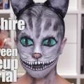 Cheshire-Cat-Halloween-Makeup-Tutorial-1